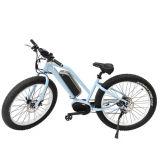 250W 36V Samsung 건전지 중앙 모터 전기 산악 자전거