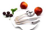 SE de lujo del vajilla del servicio de mesa de los platos y cubiertos de la cuchillería del acero inoxidable