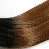 El pelo brasileño puro popular caliente de la Virgen de Ombre lía derecho