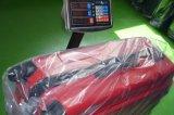 Alta calidad pura del precio del equipaje el 100% del policarbonato Niza