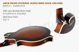 Mandolin прокатанный тавром клена Aiersi тела f типа электрический Maf010e