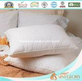 L'anatra bianca poco costosa di sonno domestico dell'assestamento giù appoggia per l'hotel