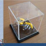 Freier Acrylspielzeug-Schaukasten