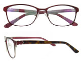 La lente de encargo de la insignia enmarca el acetato hecho a mano Eyewear de los vidrios descubiertos de la manera
