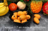 Boîte blister octogonale non chauffée à fruits et légumes jetables