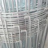 cerca galvanizada do engranzamento de fio de Veldspan da junção de dobradiça de 1.8m para a Zâmbia