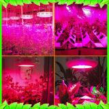 UFO LED wachsen helle volle Pflanze des Spektrum-50W wachsen Licht