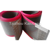 Do engranzamento revestido da fibra de vidro da alta qualidade PTFE correia transportadora