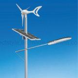 중국 가장 싼 12V 24V 500W 바람 태양 잡종 발전기 가로등 시스템