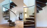 Spirale alla moda/scala elicoidale/curva con l'inferriata di vetro della scala