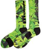 Grün-Blätter für die jungen Männer, die Auslese-Socke laufen lassen