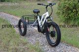 شاحنة ذكيّة درّاجة ثلاثية كهربائيّة مع [بس]