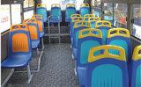 Nuova sede di plastica del bus per LUMINOSO