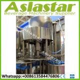 10000bph het Vullen van het Water van de fles Minerale Zuivere Machine die Vloeibare Installatie drinken