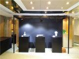 Système d'affichage de mur d'éclairage d'Offcial d'enchère d'art du HK
