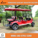 Buggy elettrico di golf di Seaters Sihgtseeing del commercio all'ingrosso 6