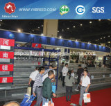 Cages d'oiseau chinoises de matériel d'aviculture de matériel d'agriculture à vendre