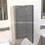 (T-018) Governo moderno di vanità della stanza da bagno di vendite della mobilia calda dell'acciaio inossidabile