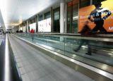 مشية متحرّك آمنة داخليّ خارجيّة مسافر مصعد مطار