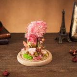 Fiore naturale Handmade per il regalo di festa