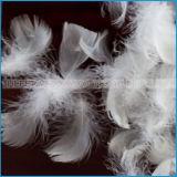 Weiße Ente-oder Gans-Massenfedern