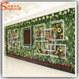 Heißer Verkauf und faszinierende Plexiglas-Wand