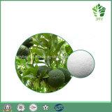 Täglicher Supplyment Zitrusfrucht Aurantium Auszug, Synephrine 6%~ 95%, Gewicht-Steuerung