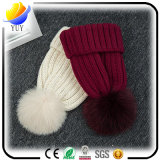 Les dames façonnent les chapeaux neufs coréens chauds de l'hiver