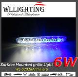 6 Oppervlakte van het Traliewerk Warnig van W zet de Dunne LEDs op