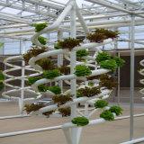 Invernadero del hidrocultivo para el crecimiento vegetal