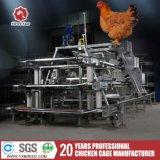 un tipo gabbia automatica del pollo