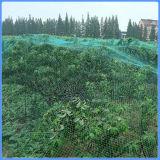 Reticolato del giardino di abbondanza della raccolta per coprire gli alberi da frutto