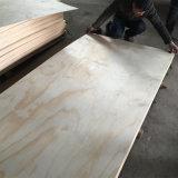 Face do pinho e empacotamento traseiro da classe da madeira compensada BB/CC