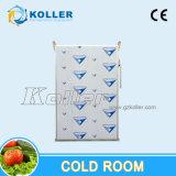 Холодная комната для мяса/плодоовощ/овощей/молока/югурта