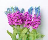 Bello fiore Handmade variopinto del Bush della lavanda