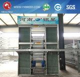 Cage de batterie à la ferme du Kenya
