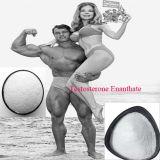 Testosterona esteroide Enanthate del polvo de Homone de la pureza caliente de la venta el 99%