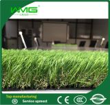 Bello paesaggio artificiale sempreverde del tappeto erboso