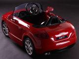Лицензированная езда на Roadster Audi Tt автомобиля