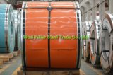 304 2b ont laminé à froid l'enroulement d'acier inoxydable dans l'épaisseur de 0.6mm
