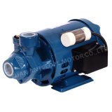 Alta calidad Surface Domestic Peripheral Water Pump con el CE (QB-60)
