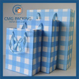 緑の縞の印刷の小さいギフトのパッキング袋(DM-GPBB-054)