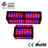 에너지 절약 360 광속 각 수직 LED는 증명서를 준 가벼운 150W/300W LED를 증가한다 재배지 또는 온실 CE/RoHS/LVD/EMC를 위해 가볍게 증가한다