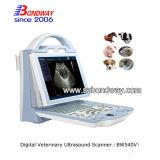 초음파 스캐너 휴대용 초음파 수의사 장비