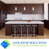 Gabinetes de cozinha clássicos da mobília modular do revestimento do folheado (ZY 1034)