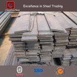 Barre plate courante d'acier inoxydable (CZ-F57)