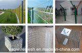 河北の工場高品質は/Plasticによって溶接された金網の/Weldedの金網に電流を通した