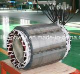 De hoogste Kwaliteit verkoopt 45kw Brushless Alternator voor Verkoop (JDG224ES)