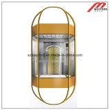 Лифт самомоднейшей высокоскоростной комнаты машины панорамный (DPNO35)