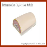 Vereinfachtes intramuskulöse Einspritzung-Trainings-Auflage-Modell